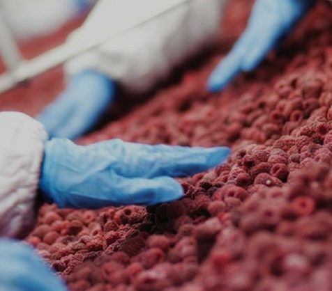 The Importance of Preventative Controls with Food Engineering Magazine